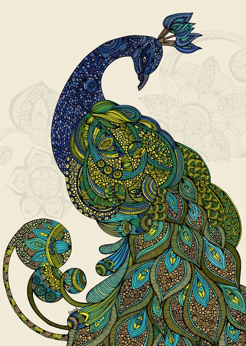 Drawn peafowl artistic Pin Bnspyrd and by 761