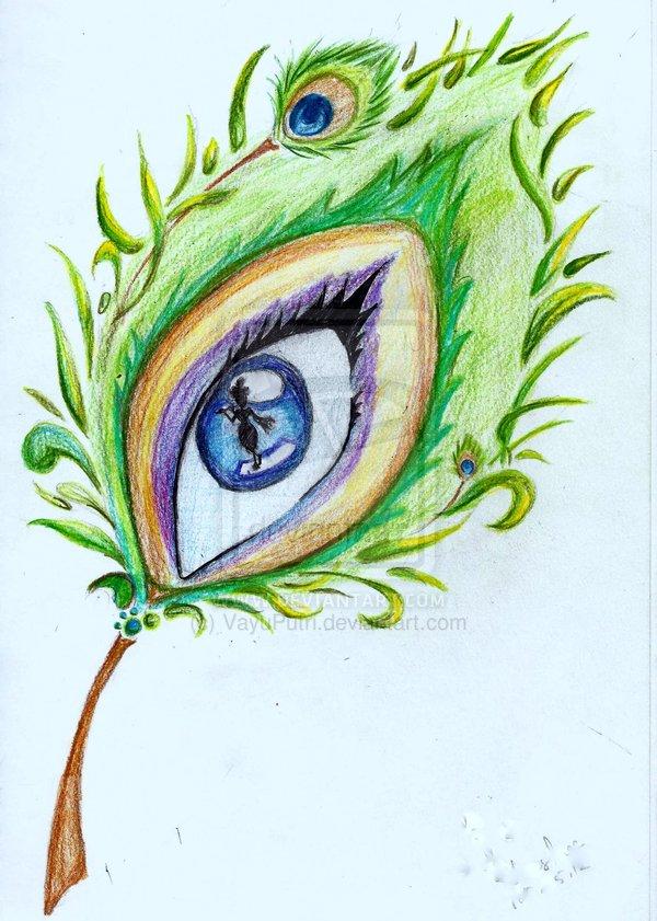 Drawn peafowl creative eye DeviantART Drawings eye Peacock peacock