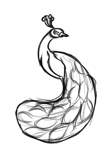 Peacock clipart sketch On form Pin Craft Art