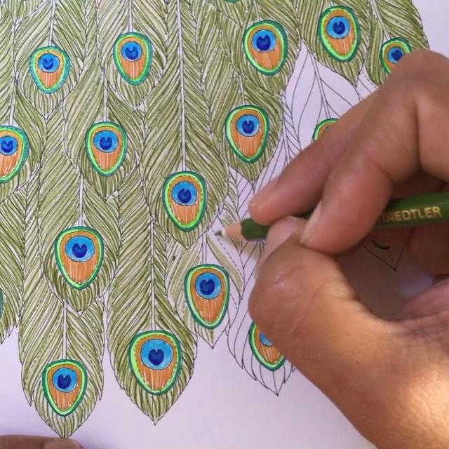 Drawn peacock filigree DrawingPeacock look mandala to Great