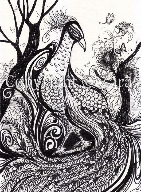 Drawn peafowl pen Images Original Il drawing illustration
