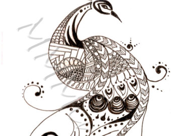 Drawn peafowl pen Etsy Pen and Ink Drawing