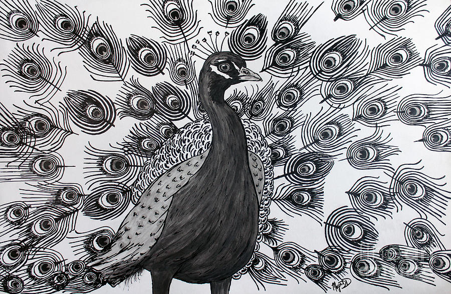 Drawn peafowl pen By Line Walk DuBois Drawing
