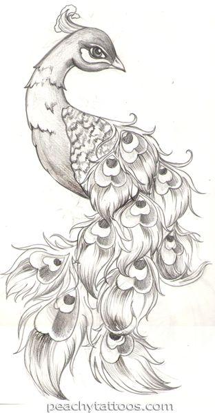 Drawn peafowl pinterest Idea? to * mosaic Peacocks