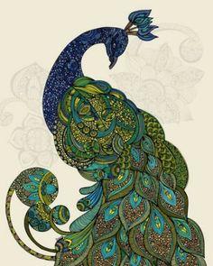 Drawn peafowl pinterest Peacock ClipArt Intricate Peacock IDEAS