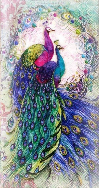 Drawn peafowl pinterest Ƭσ best Ꮗҽℓƈσɱҽ 865 Pinterest
