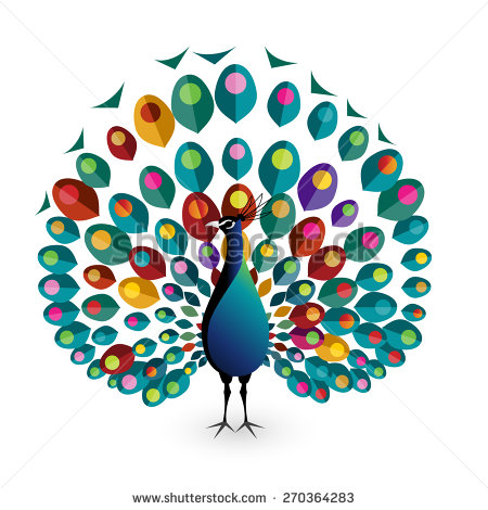 Peacock clipart vector Search Projects Google colorful drawing