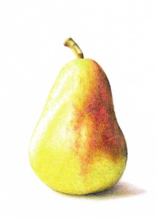 Drawn pear Hill: Let's Pear! BlueBird a