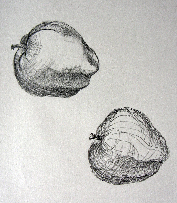 Drawn pen apple Drawing White Leslie Creative crosscontour5
