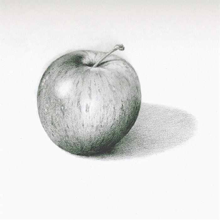 Drawn pen apple Princess sketch drawing sketch Wars