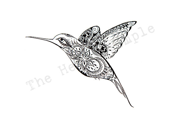 Drawn pen bird Hand Love hummingbird drawn swallow