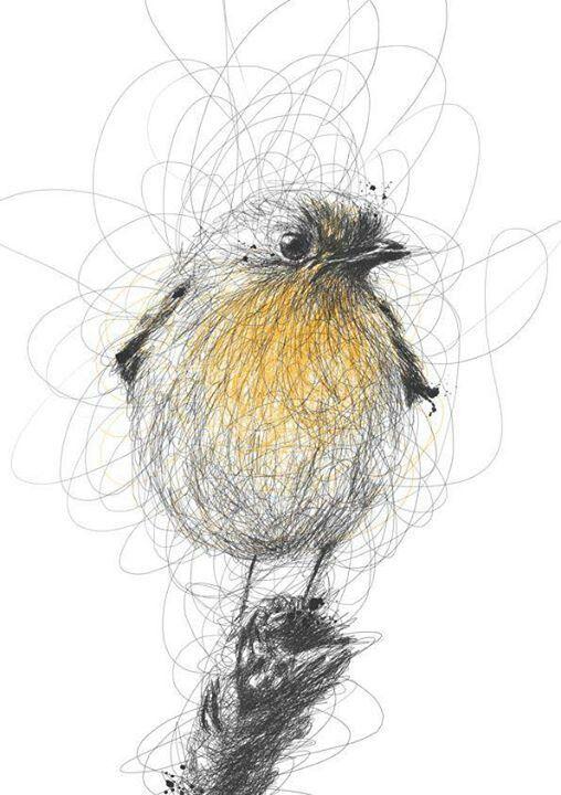 Drawn pen bird (Malaisia) Ballpoint to drawings on