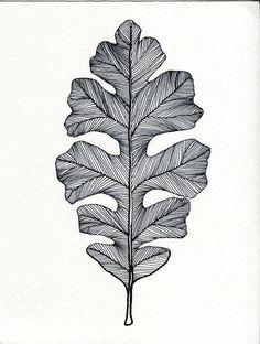Drawn pen black DrawingLeaf or Leaf Green Black