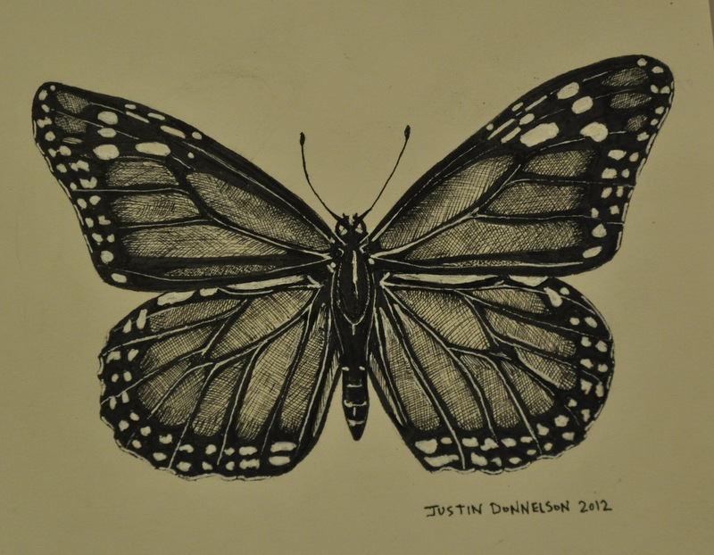 Drawn pen butterfly A Pen and of of