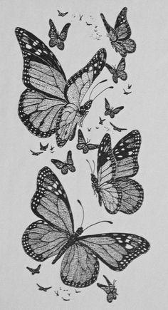 Drawn pen butterfly Tattoos Drawing: tattoo Search Photo