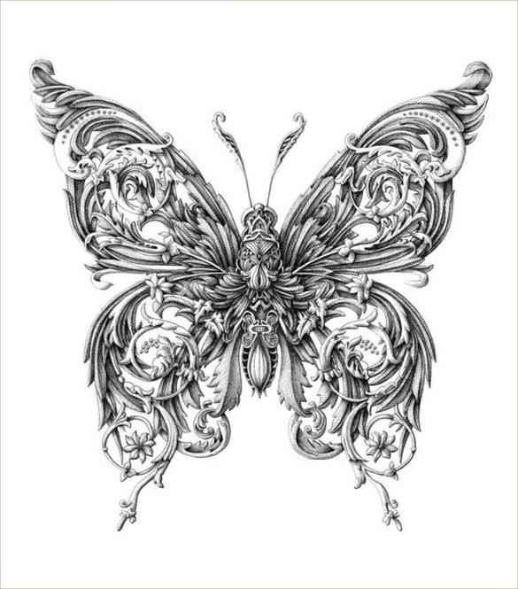 Drawn pen butterfly #11