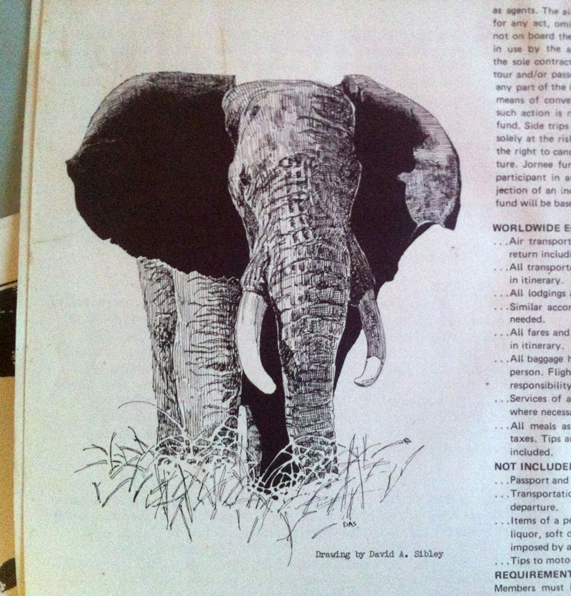 Drawn pen elephant My an 1978 first paid