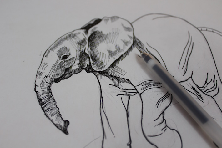 Drawn pen elephant To a fine with Easy