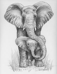 Drawn pen elephant Pinterest baby on drawing of