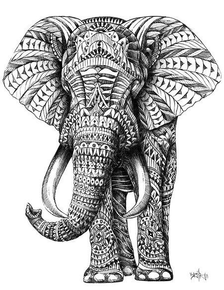 Drawn triipy elephant Elephant