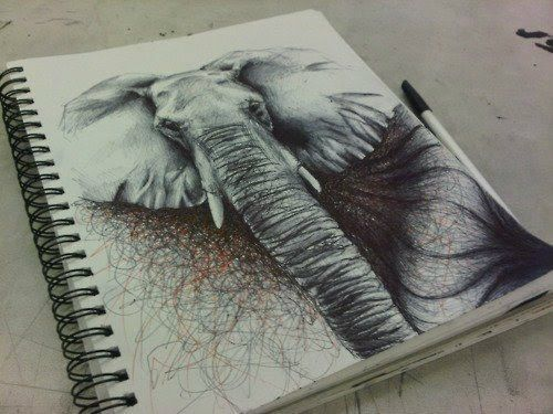Drawn pen elephant Images 109 best Notebook Drawings