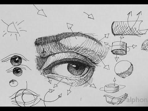 Drawn pen eye Ideas breakdown parts the eye