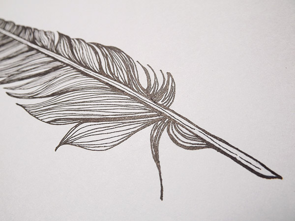 Drawn pen feather Drawing Ink IMGFLASH 65796 Feather