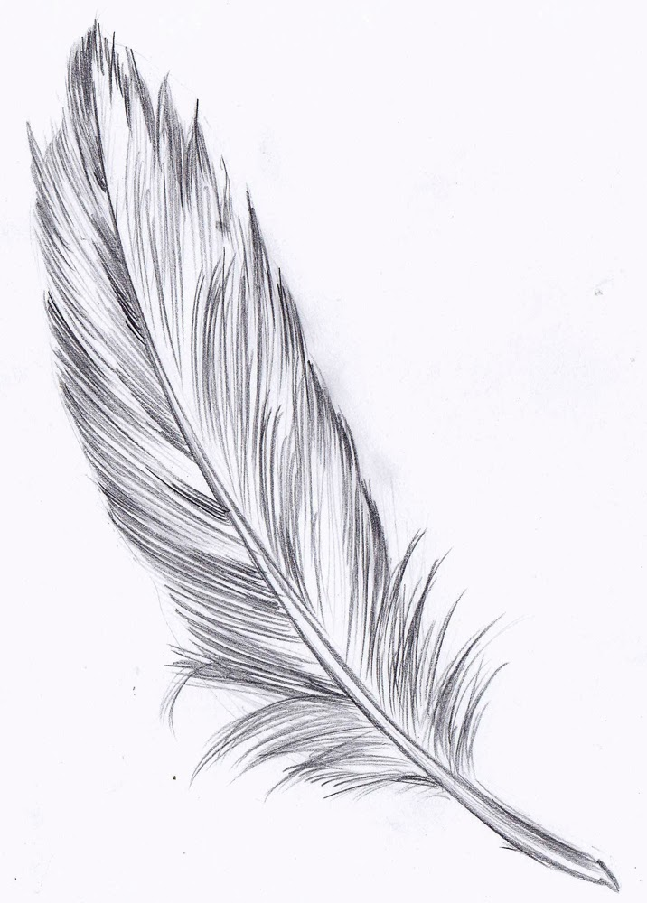Drawn pen feather Pixels 000 Angel Draw draw+a+feather+1