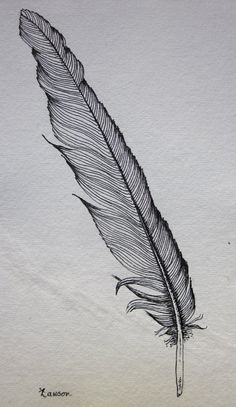 Drawn pen feather Original drawing ink Feather Pinterest