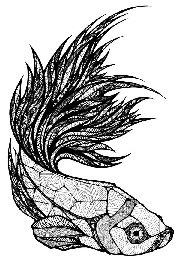 Drawn pen fish That is natural is Love