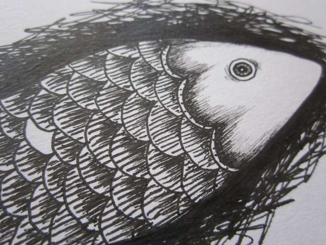 Drawn pen fish And ink showed the that