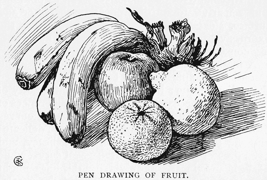 Drawn pen fruit / Walter Form Pen and