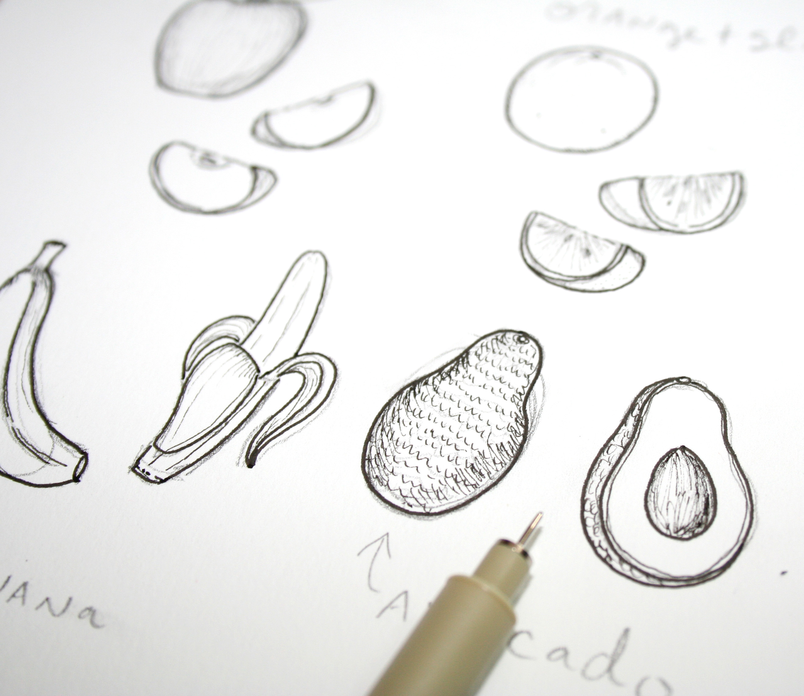 Drawn vegetable line art Your Labor: pen Switch to