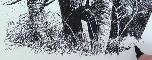 Drawn pen grass Online grass and Pen in