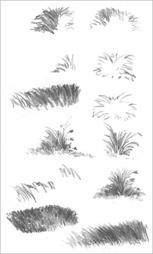 Drawn pen grass GRASS Wright Diane by and