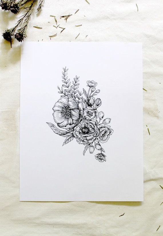 Drawn peony simple 8 Floral Botanical Pen 11