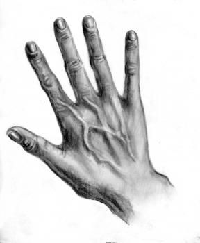 Drawn pen hand drawing Best drawings Hand Step 25+