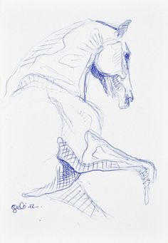 Drawn pen horse Drawing Sketch realistic A Horse