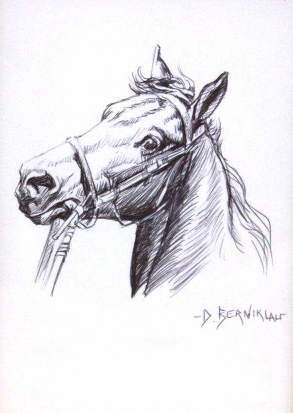 Drawn pen horse Combining pen  rendering Pen