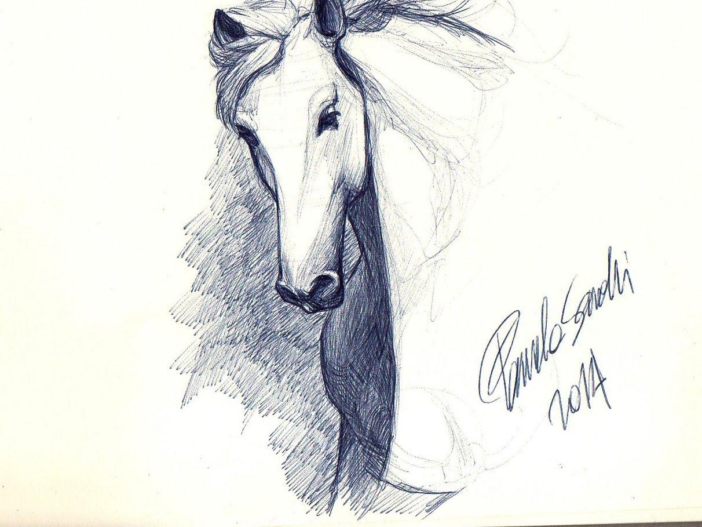 Drawn pen horse Horse: White sketch White draw