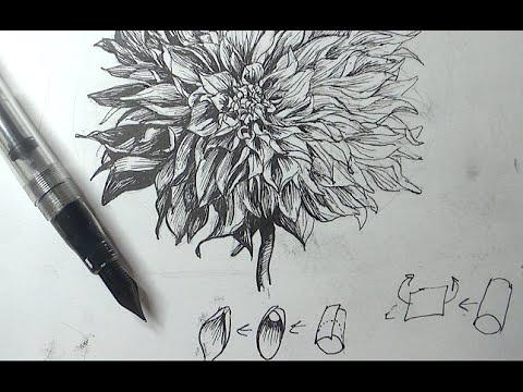 Drawn spheric ink A flower Pen Tutorials a