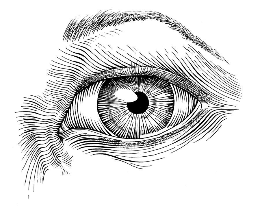 Drawn pen ink pen art And Pen Eye Eye deviantART