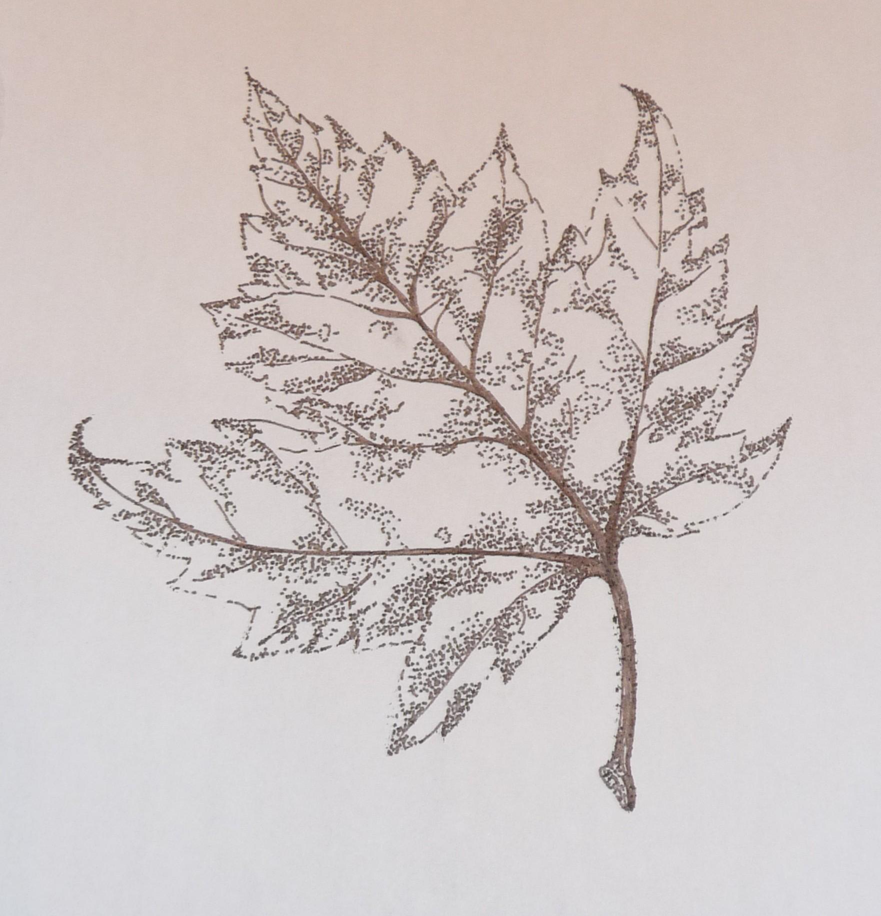 Drawn pen leaf 08 05 Pen  Nicholls