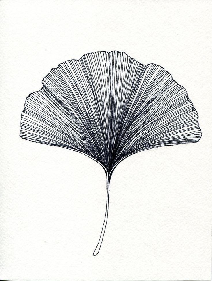 Drawn pen leaf 00 on via or Leaf