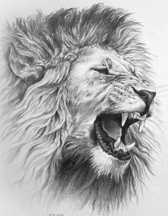 Drawn pen lion Pinterest Lion Pen Best Lion
