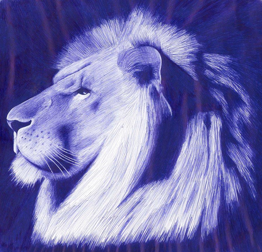Drawn pen lion Pen by in by owenbalfe