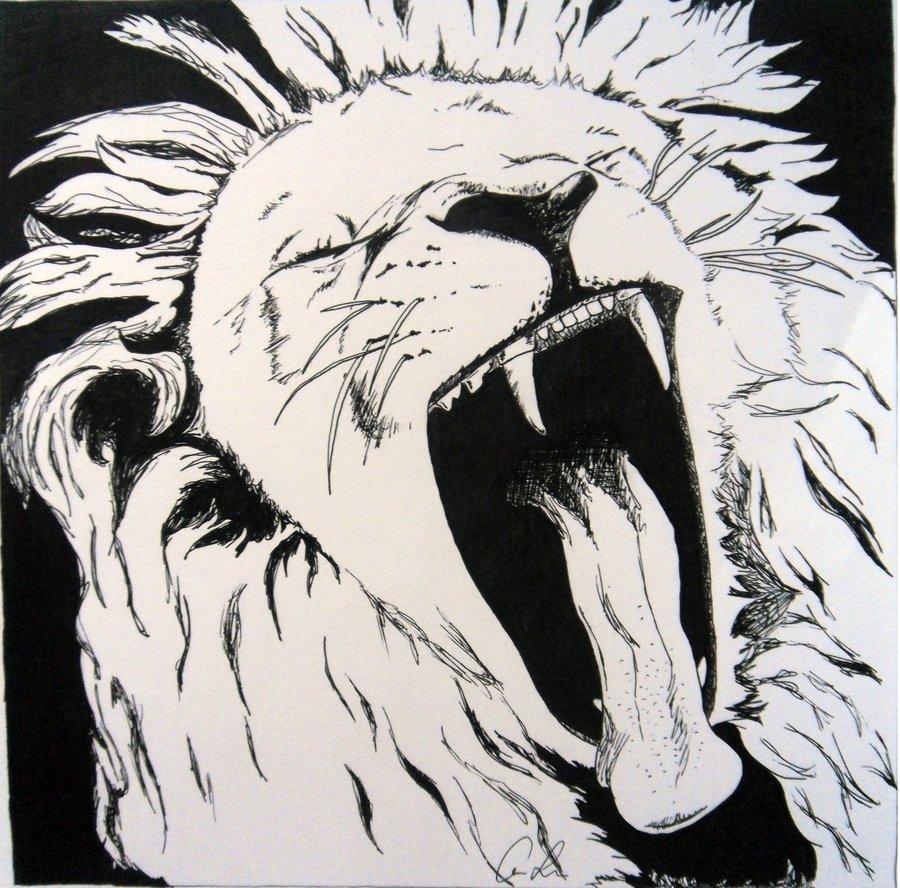 Drawn pen lion Roar by Lion by x91abi