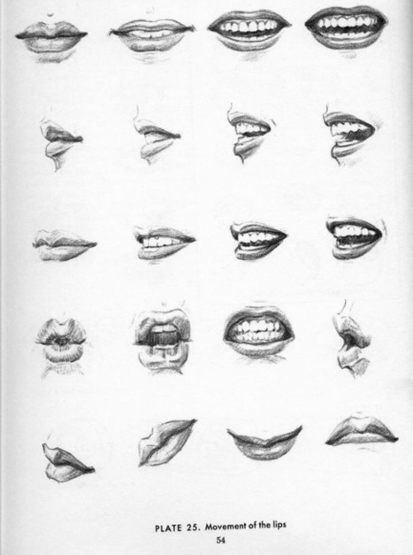 Drawn profile mouth Drawing and References Mouth