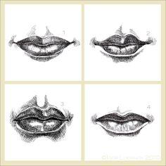 Drawn pen mouth Human beginner Sketch beginner exercise