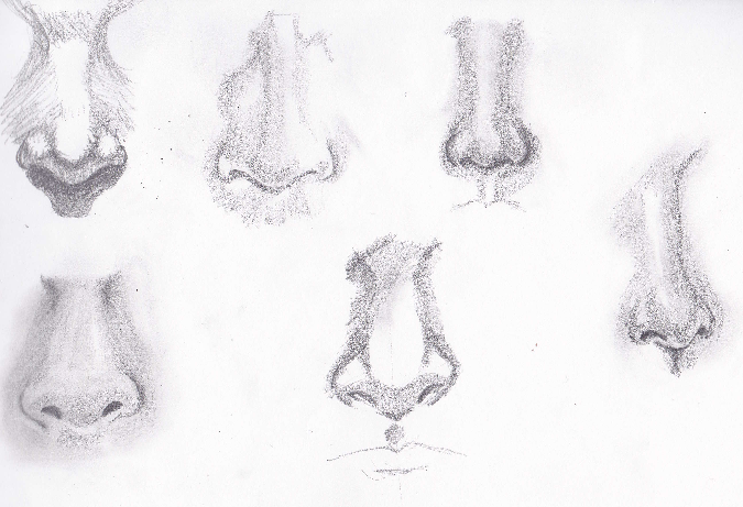 Drawn pen nose #noses share you in be